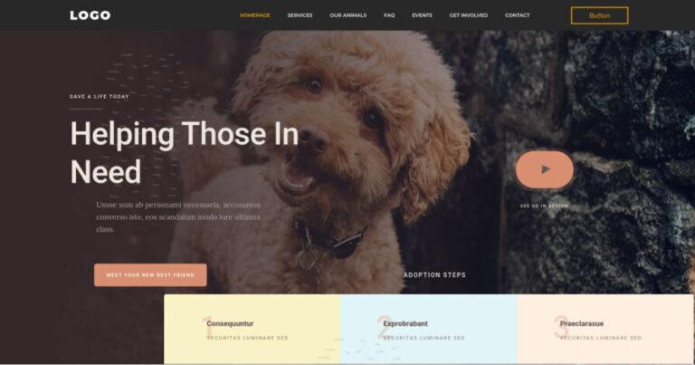 NGO-website-featured